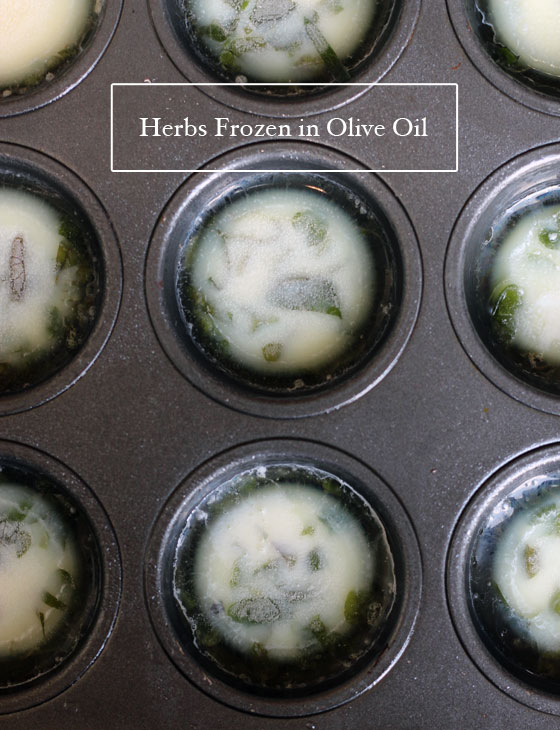 Herbs-Frozen-in-Olive-Oil