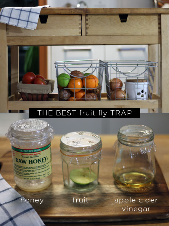 how to get rid of fruit flies naturally little green dot. Black Bedroom Furniture Sets. Home Design Ideas
