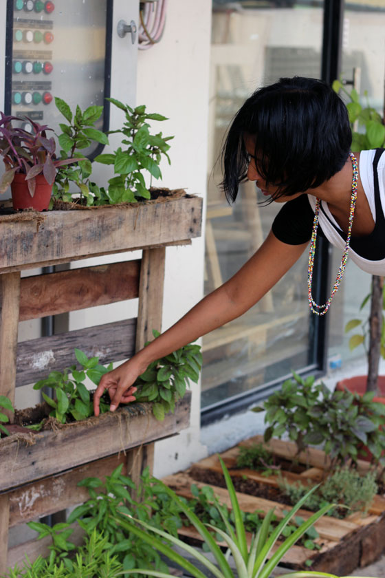 An Urban Gardening Philosophy that You'll Love