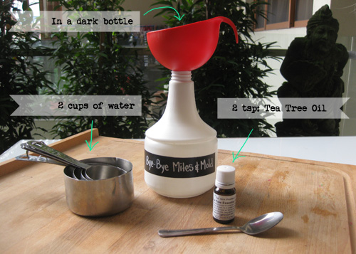 Bye-Bye Mites & Mold – All-Natural Mites & Mold Killer Recipe