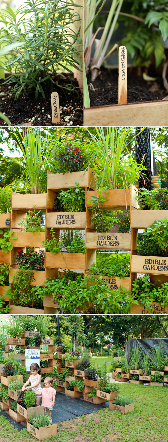 vertical vegetable garden #9