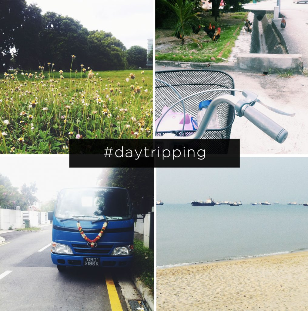 day-tripping2