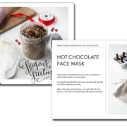 Look inside SIMPLIFY Skin: Handmade for the Holidays | littlegreendot.com